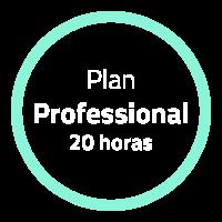 planProfessional20h170